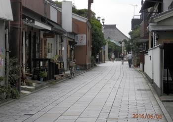 P6080372 (2).miyako.1000.jpg