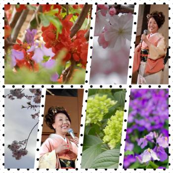 collage.miyak.kk.png